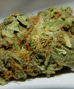 Buy Amnesia Haze Online-buying marijuana -buy marijuana