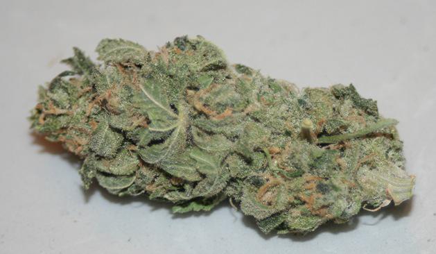 Buy Cheap Blueberry Kush-buying real marijuana online-Buy Weed