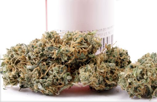 Buy Cannatonic Marijuana-marijuana products for sale-Buy Weed
