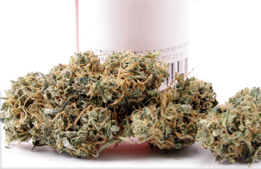 cannatonic marijuana strain | buying kush online | buy kush online uk
