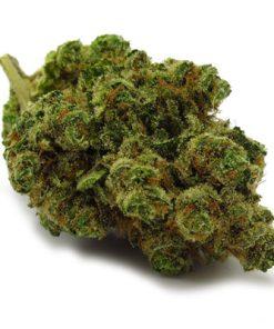 Buy Chiquita Banana Kush-marijuana buy online-buy illegal marijuana online