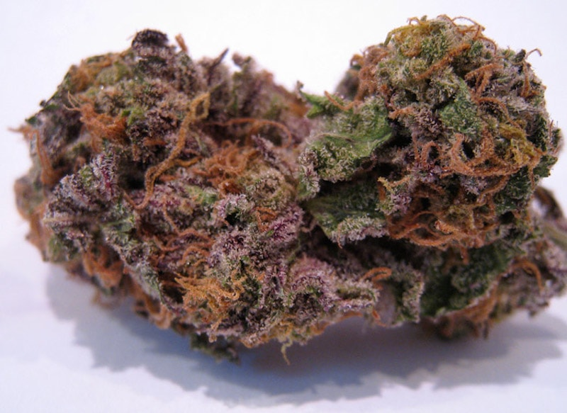 Buy Granddaddy Purple Strain-marijuana products for sale-Buy Weed