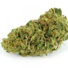 Buy Green Crack Bud-buy marijuana in Canada-weed for sale