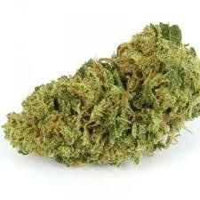 Buy Green Crack Bud-buy marijuana in Canada-weed for sale