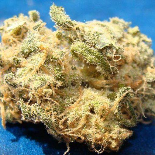 Buy hawaiian snow weed |weed hawaiian snow |hawaiian snow weed price