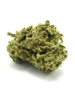 Buy Jack Herer Online-marijuana for sale on craigslist-Buy weed