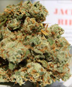 Buy Jack The Ripper Strains Online-medical marijuana for sale