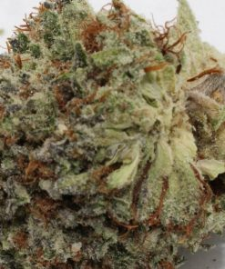 Buy LA Confidential Kush-where can i buy marijuana-Buy Kush Cheap