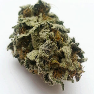 Buy Purple Arrow Marijuana-weed for sale -weed for sale online