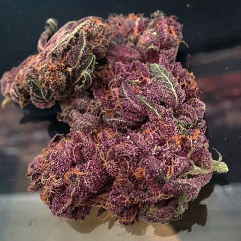 Buy Purple Kush Cheap-buy marijuana -where to buy marijuana