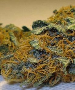 Buy Super Skunk Weed Online-where can i buy marijuana-buy Weed