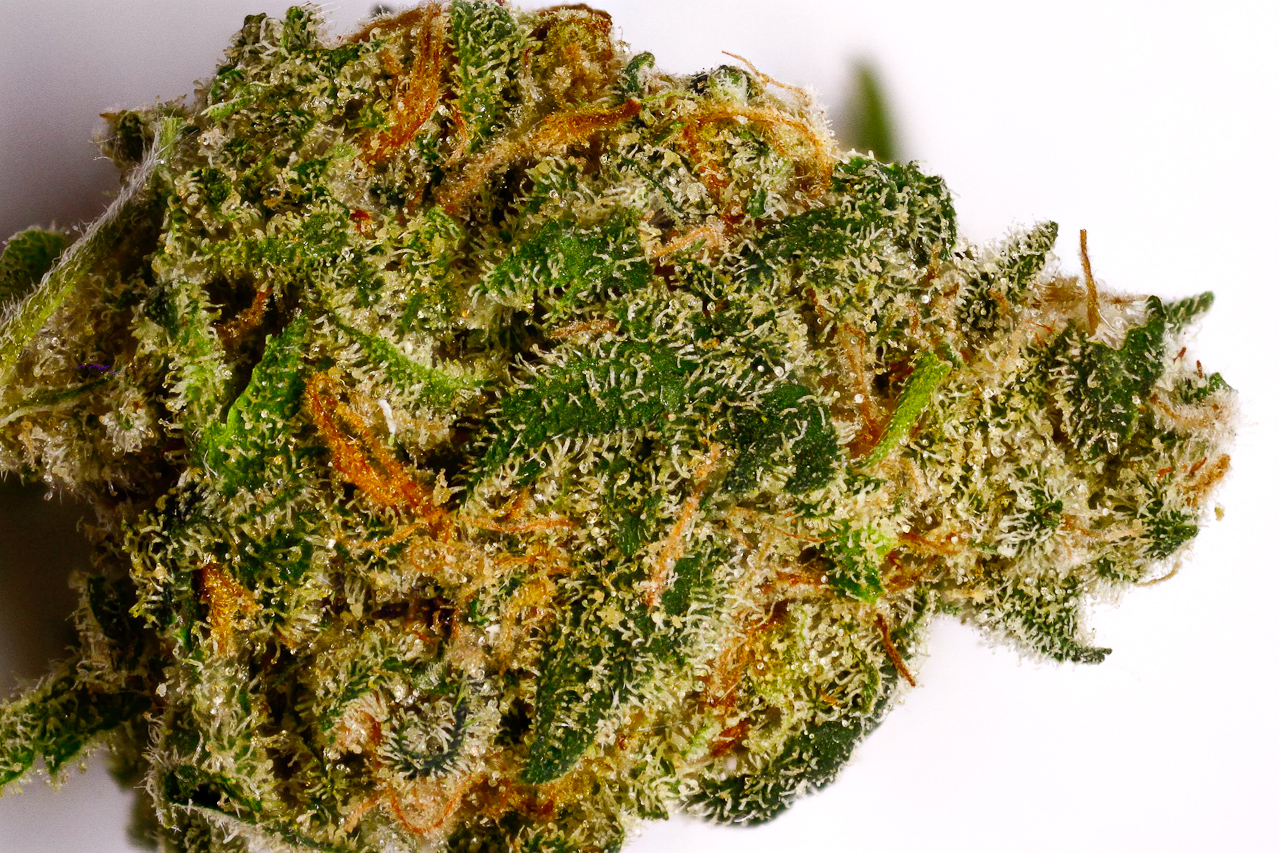 Buy Cheap Afghan Kush Online-weed for sale-k2 weed for sale