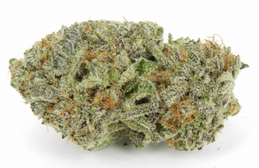 blackberry x white rhino | what is hybrid marijuana | Buy Kush Illegal