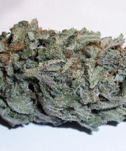 Buy Crypt Hybrid Strain Online-Buy Marijuana Hybrids-Buy Weed