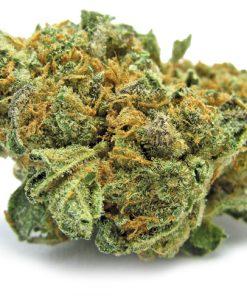 Buy Monster Cookies Strain-buy illegal marijuana online