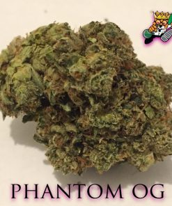 Buy Phantom OG Strain Online-buy medical marijuana-weed for sale
