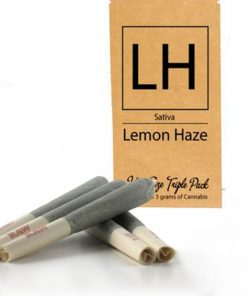 Buy Lemon Haze Pre-Rolled Joints-pre rolled joints colorado